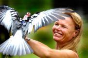 Kirstin Fedderson bird wrangling